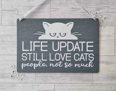 still love cats