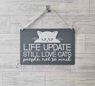 life update cat