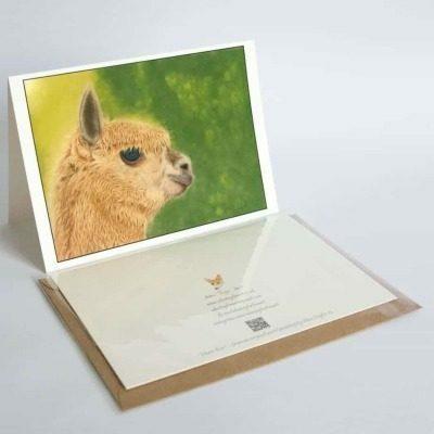 Alpaca greeting card by Alan Taylor Art