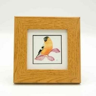 Bullfinch small framed art by Alan Taylor Art