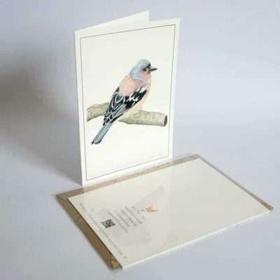 Chaffinch greeting card by Alan Taylor Art