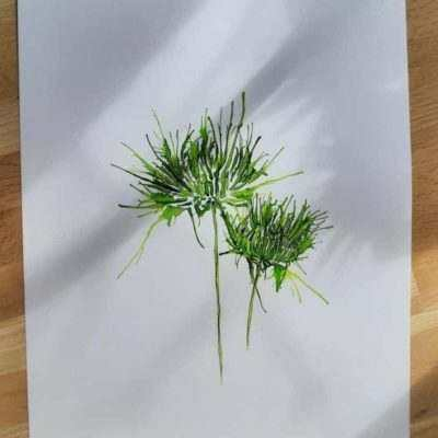 Chrysanthemum abstract painting