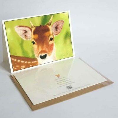 Deer greeting card by Alan Taylor Art