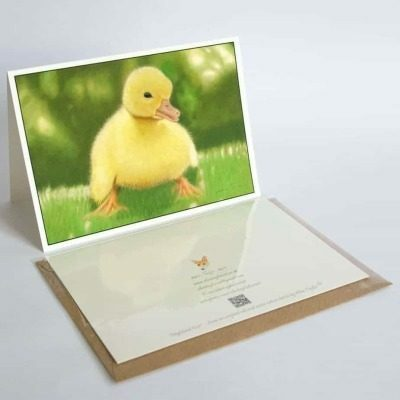 Duckling greeting card by Alan Taylor Art