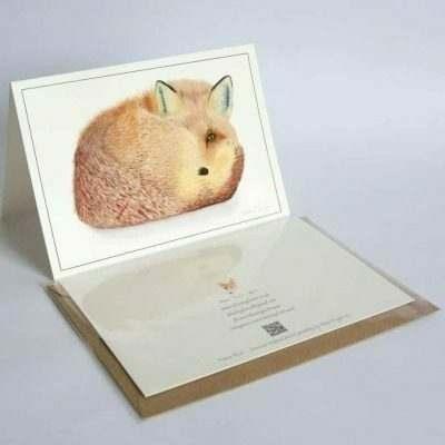 Fox greeting card by Alan Taylor Art