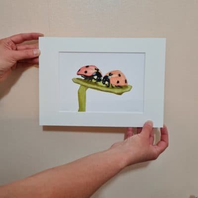 Gift for Ladybird lover, nature print, wildlife art by Alan Taylor Art