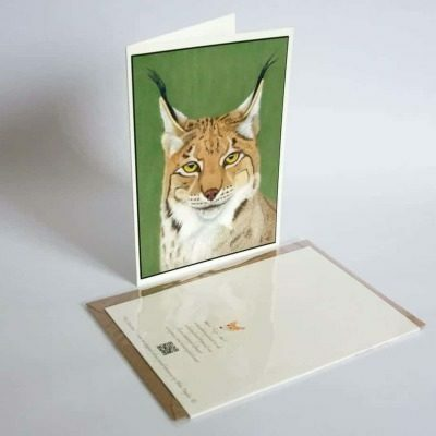 Lynx greeting card by Alan Taylor Art