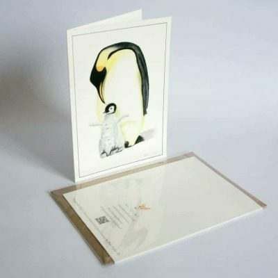 Penguin greeting card by Alan Taylor Art