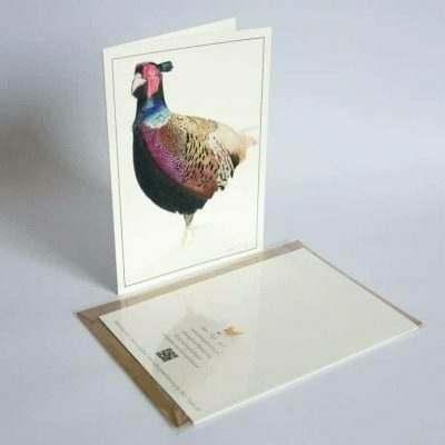 Pheasant greeting card by Alan Taylor Art