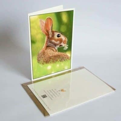 Rabbit greeting card by Alan Taylor Art