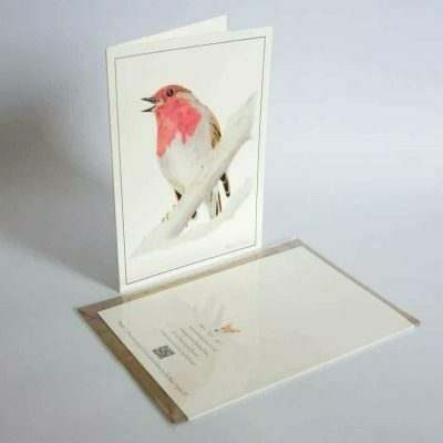 Robin greeting card by Alan Taylor Art