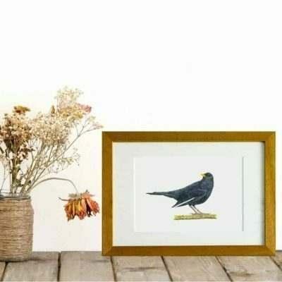Blackbird giclee print by Alan Taylor Art