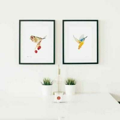 Goldfinch and kingfisher mounted giclee print collection by Alan Taylor Art