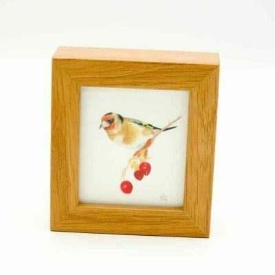 Goldfinch miniature box framed art by Alan Taylor Art