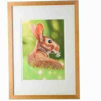 Rabbit giclee print by Alan Taylor Art