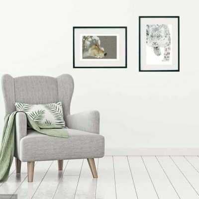 Snow leopard and snow wolf giclee print collection by Alan Taylor Art